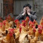 What Is h7n9 and Why You Should Be Worried